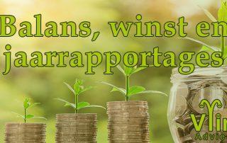 BLOG Balans Winst en Jaarraportages