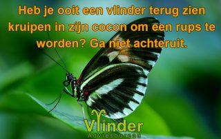 Quotes heb je ooit een vlinder terug zien kruipen